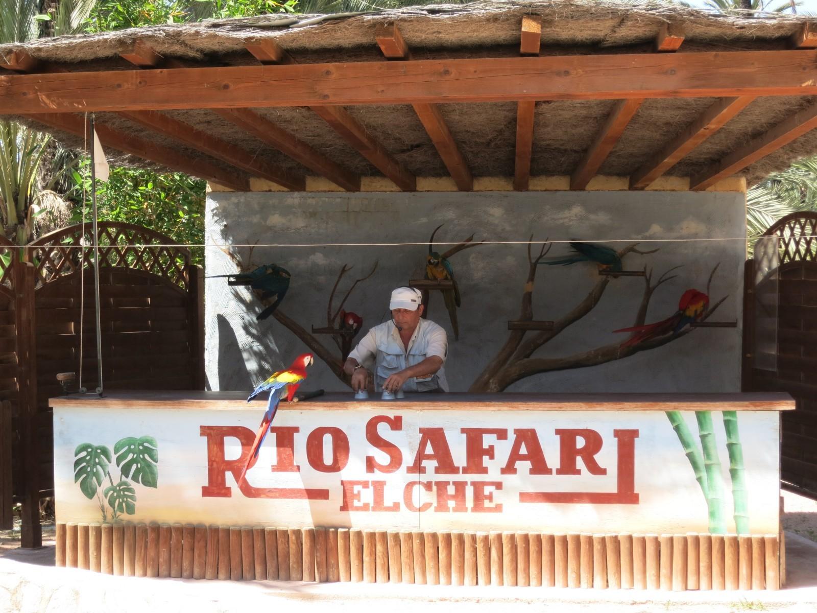 Riosafari-6